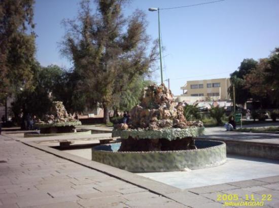 Jardin du marché